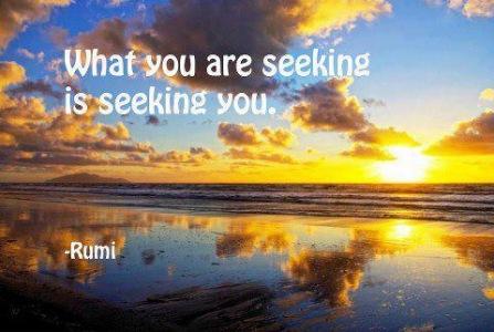Det du søger søger dig
