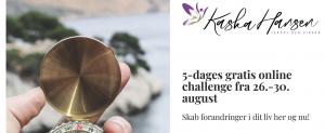 5-dages gratis online challenge 26.-30. august